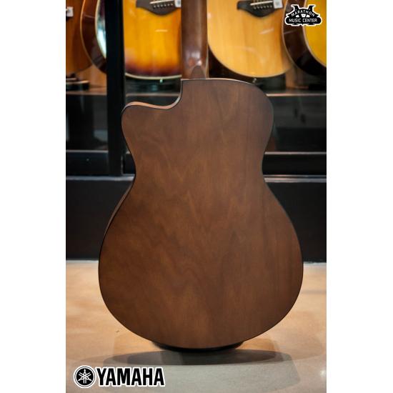 yamaha FS100C